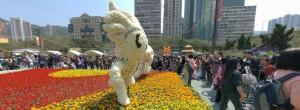 HK FLOWER SHOW 2009